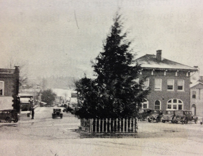 old photo of Christmas tree in middle of intersection